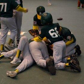 Virtus Baseball